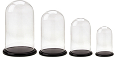 Glass Domes with Black Acrylic Bases