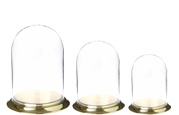 Glass Domes with Brass Base