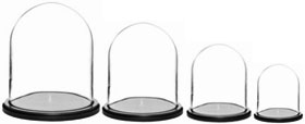 Glass Domes with Black Wood Bases