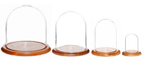 Glass Domes with Oak Bases