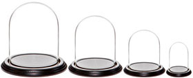 Glass Domes with Black Wood Veneer Bases