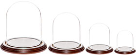 Glass Domes with Dark Mahogany Veneer Bases